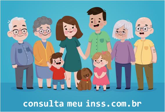 consultameuinss.com.br